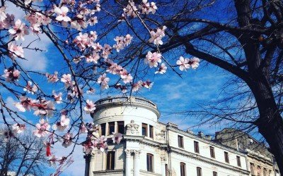 When to visit Bucharest? Springtime!