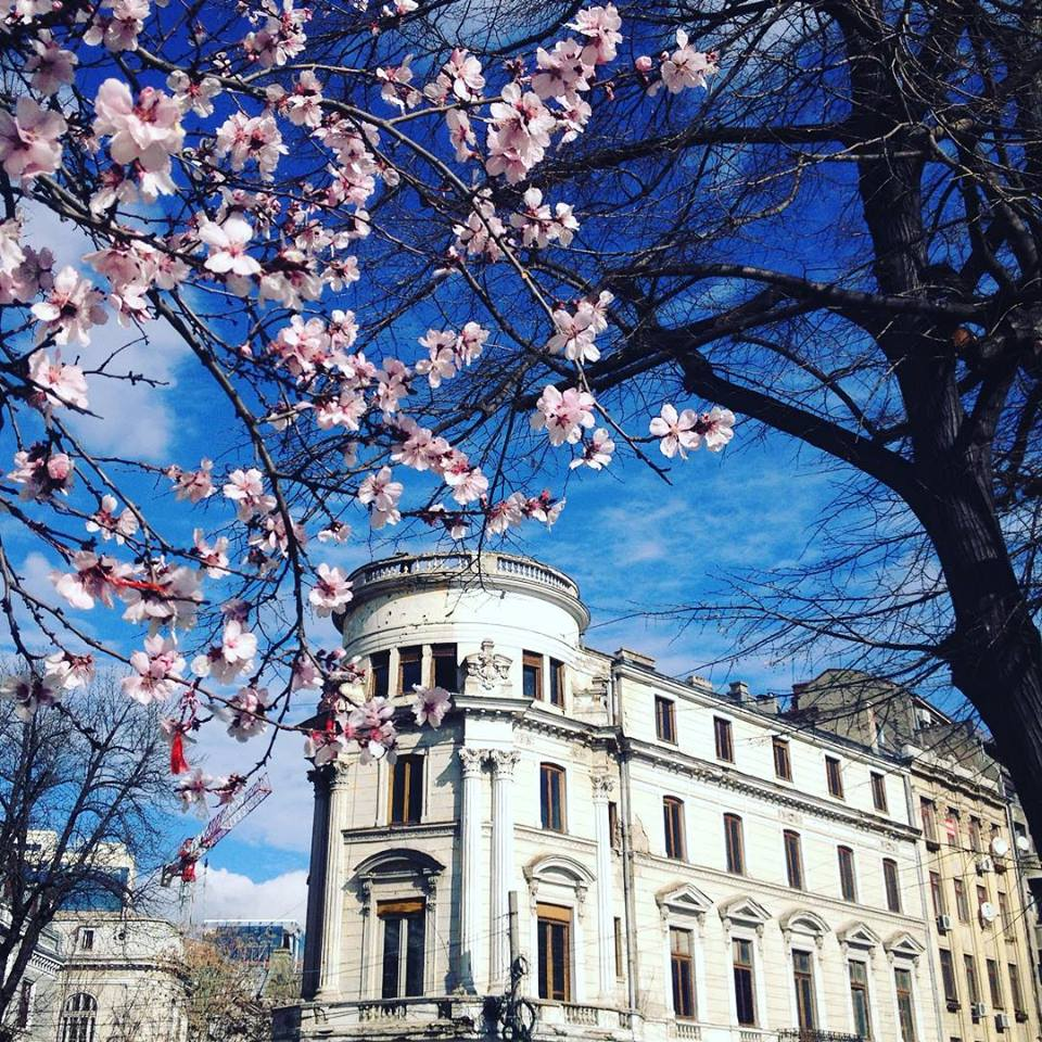 When in Bucharest - Bucharest in spring