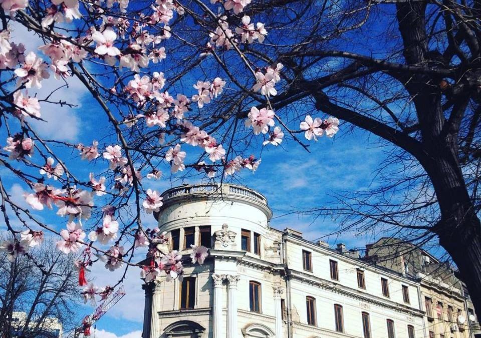 When to visit Bucharest? Springtime!